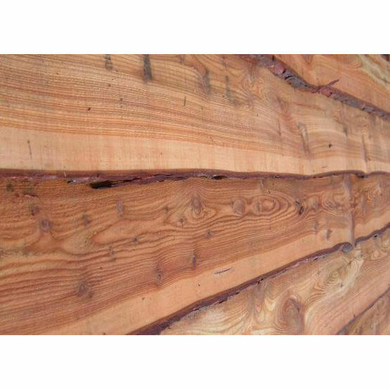 Waney Edge Larch (Untreated)